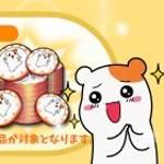 【NEW】エビちゅコイン増量!1+1エビちゅコインパック !【6/1 11:00まで】